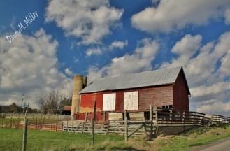 Barns in the Sky(w)# (7)