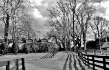 Fences in Black and White(e)# (5)