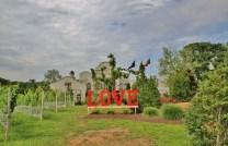 LOVE at Morais Winery