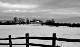 Fences in Black and White(e)# (7)