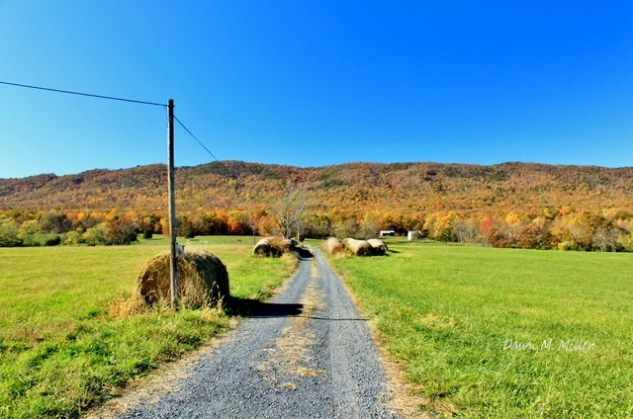 Back Road, Shenandoah County Virginia