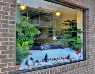 pot-town-organics-holiday-window
