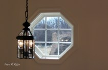 Windows at Andrew's house# (3)