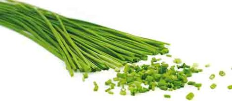 chopped chive