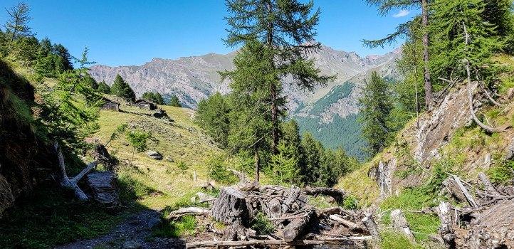 Gran Paradiso-Alpe
