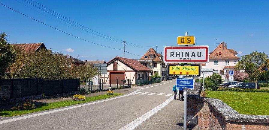 Rhinau D5