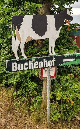 Wanderweg 5 um Oberweis in der Südeifel