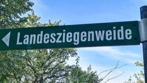 HW5 Wanderparkplatz Landesziegenweide