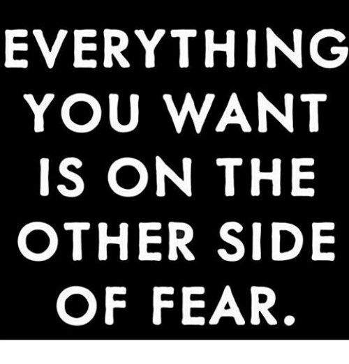 everything-you-want-is-on-the-other-side-of-fear-24042728