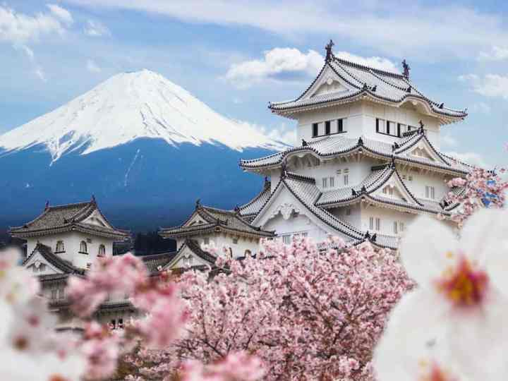 Top FREE Japan Classified Sites List 2020 {Updated}