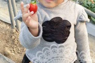 【365-50親子遊】蝦米~我在大溪採草莓耶!(3y10m28d&45d)