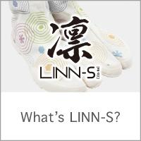 What's LINN-S?