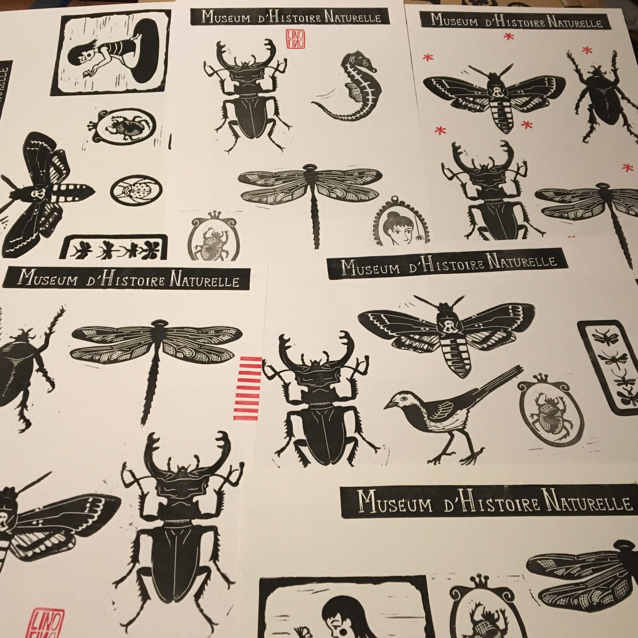 LinoLino | Linogravure et créations à partir d'impressions artisanales | Chambéry, France | Atelier linogravure reliure carnet Museum Histoire Naturelle Chambéry mai 2020