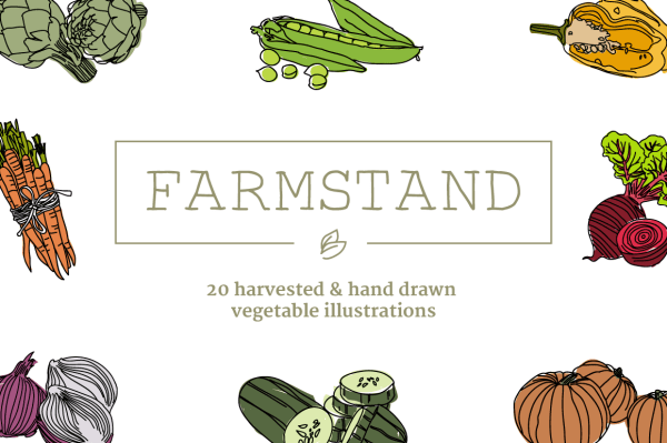 Vegetable Illustrations 1