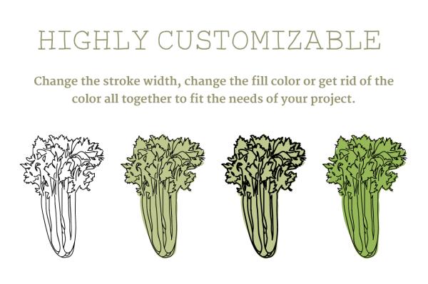 Vegetable Illustrations 2
