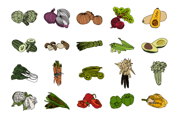 Vegetable Illustrations 3