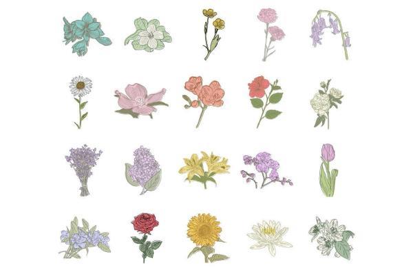 Hand Drawn Flowers 2