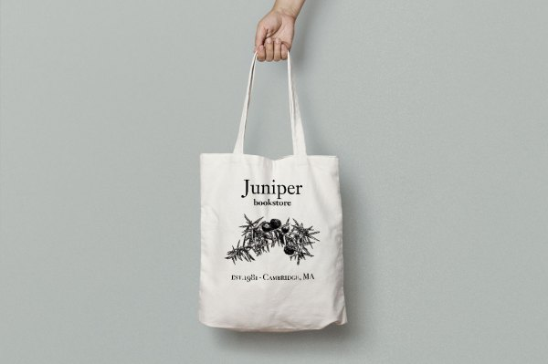 Hand Drawn Herbs and Spices Juniper