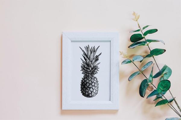 Hand Drawn Vintage Fruit Illustrations 4