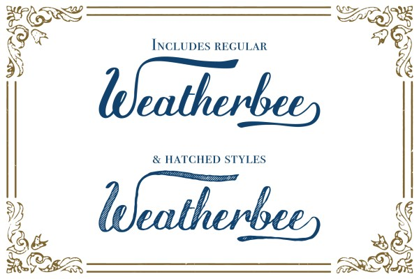 Weatherbee Script Font_Preview 8