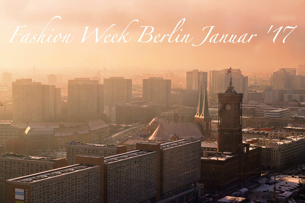 Berlin Fashion Week Diary, Fashion Week Diary, Berlin, Fashion Week, Fashion Week Berlin, mbfw, Shows, Events, Blogger, Grazia, Ausblick, Park Inn, Fotografie, aw 17, Designer