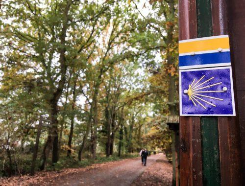 Chemin Rouen Rando foret la londe rouvray