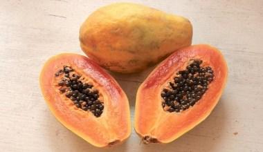 manfaat buah pepaya untuk masalah sistem pencernaan