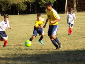 linton hall soccer team - linton-hall-soccer-team