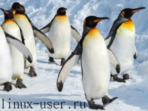 Какими особенностями обладает операционная система Линукс?