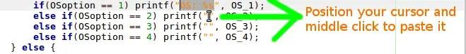 paste code shortcut in geany