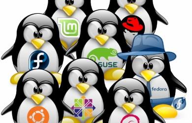 2012 linux distributions' reviews