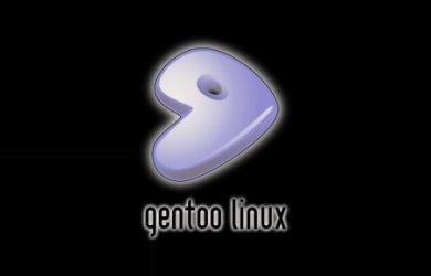 Gentoo 12