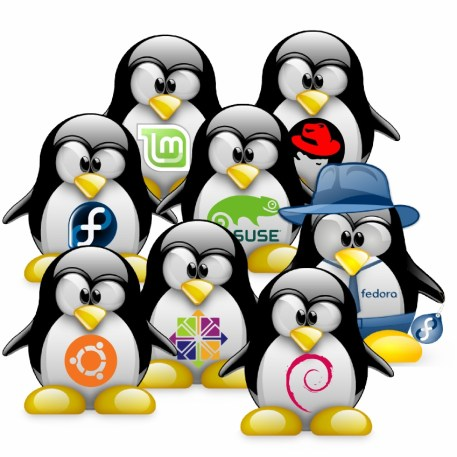 Chapter 3: Choosing a Linux Distribution — The Ultimate