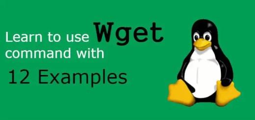 wget command