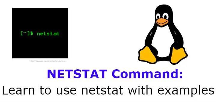 netstat with examples