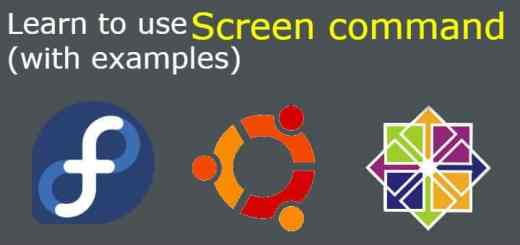 screen command with examples