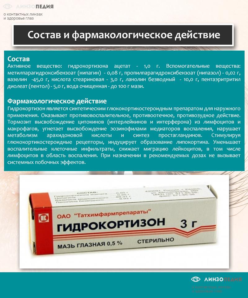 Gombamérgezés tünetei és kezelése