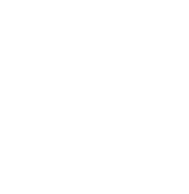 100% aronija