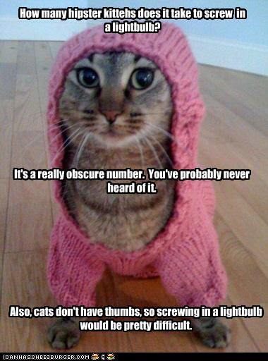 hipster-lolcat