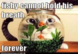 fishy_hold_breath
