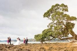 auckland wedding bridal party beside big tree