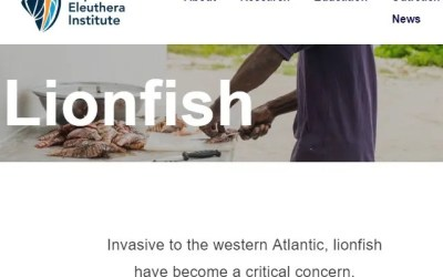 Cape Eleuthera Institute Lionfish News