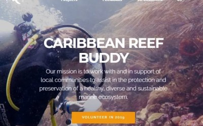 Caribbean Reef Buddy Lionfish News