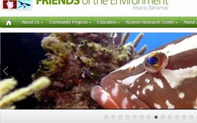Friends Of The Environment Bahamas Lionfish News