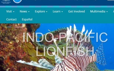 National Marine Sanctuary Foundation Lionfish News