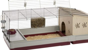 Best Indoor Rabbit Cages and Indoor Rabbit hutch