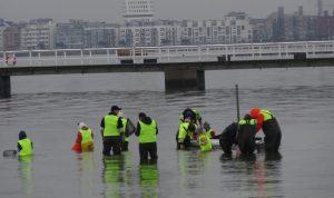 Bilden visar barn som samlar djur från vattnet som de sedan får hjälp av SEA-U's personal att analysera.