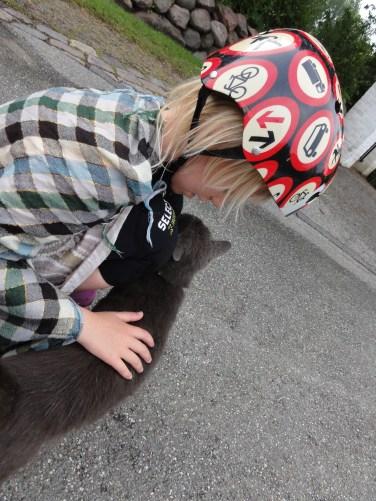 we met a very cuddly cat