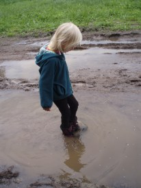 Big muddy pools of water at the rainbow gathering