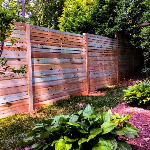 Lions Fence Privacy Fence